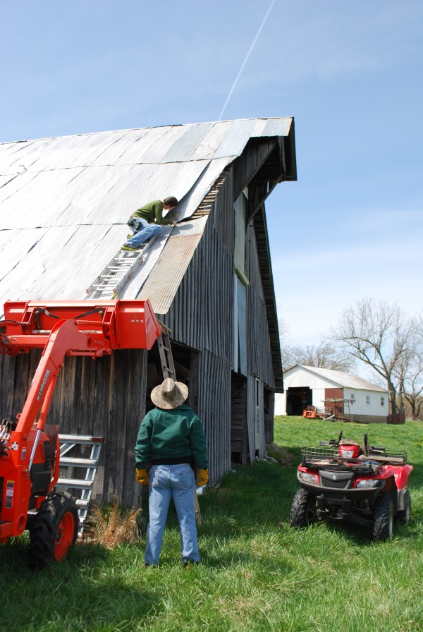 Repairing the old bard roof.