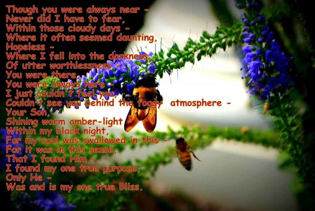 Syd's Bee and poem